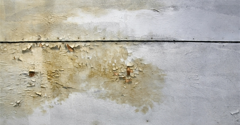 Mold Damage Repair Washington DC